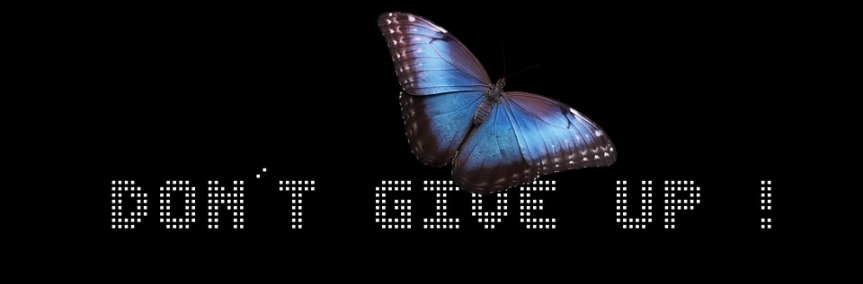 Don't give up hope image blue butterfly on black background