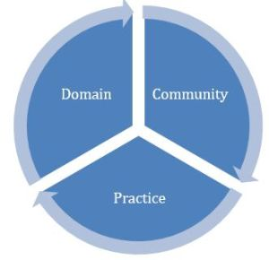 diagram showing community of practice elements