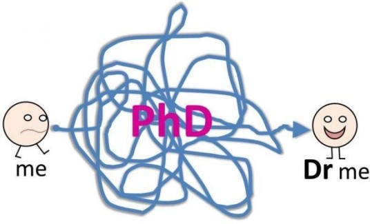 cartoon showing a tangled mess of strong betwen a person on one side and a person with a PhD on the other