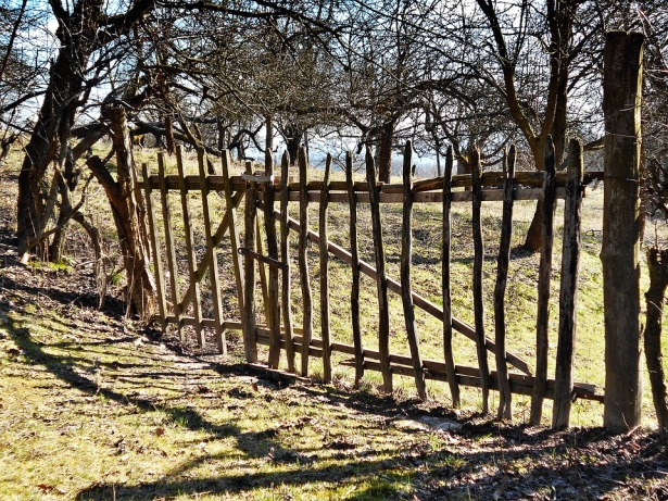 image showing a fence in woodland